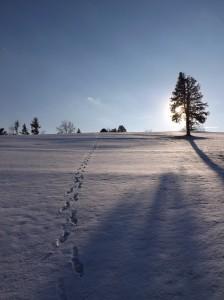 Winter 2013 024 - Copy